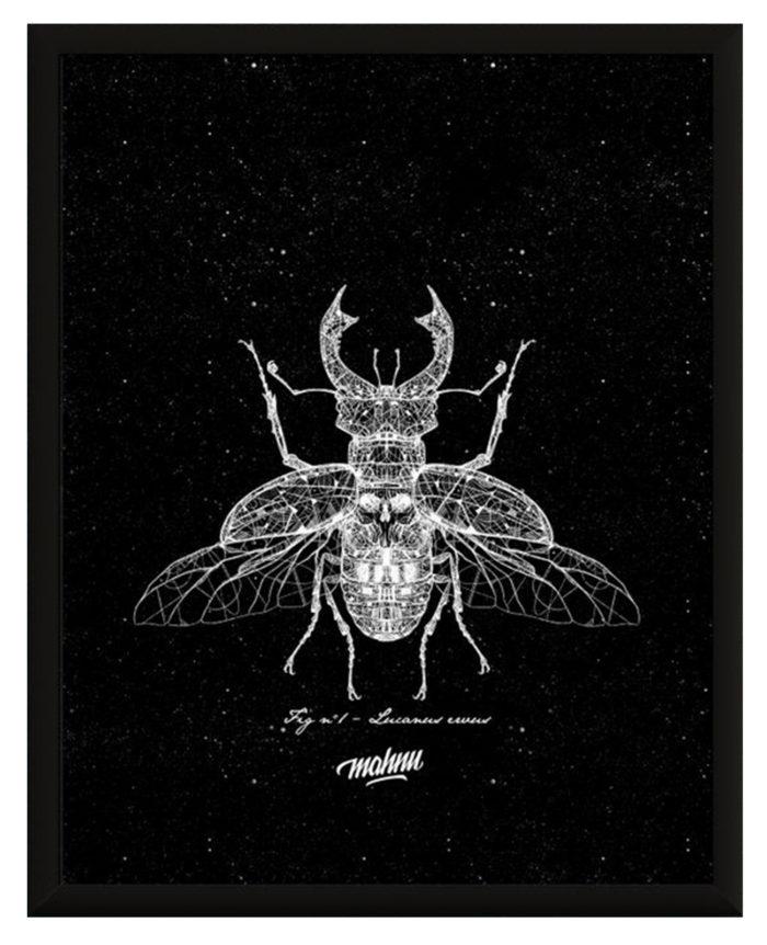 Affiche Négative Beetle avec cadre