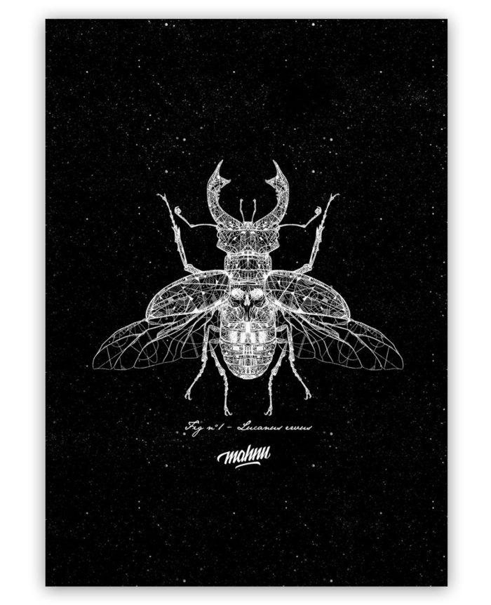 Affiche Négative Beetle sans cadre
